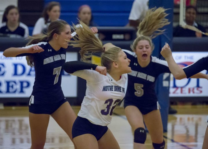 volleyball players celebrate a point
